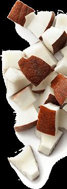morceaux de noix de coco
