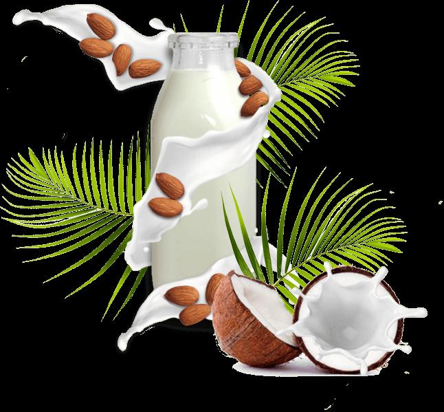Lait de coco et lait d'amande